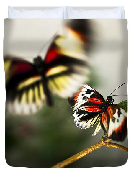 Butterfly In Flight Duvet Cover by Bradley R Youngberg
