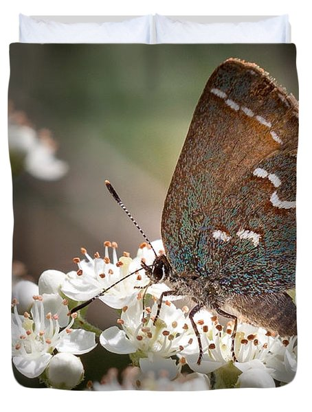 Butterfly In The Garden Duvet Cover