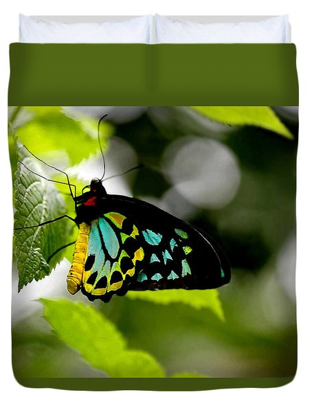 Butterfly Iv Duvet Cover