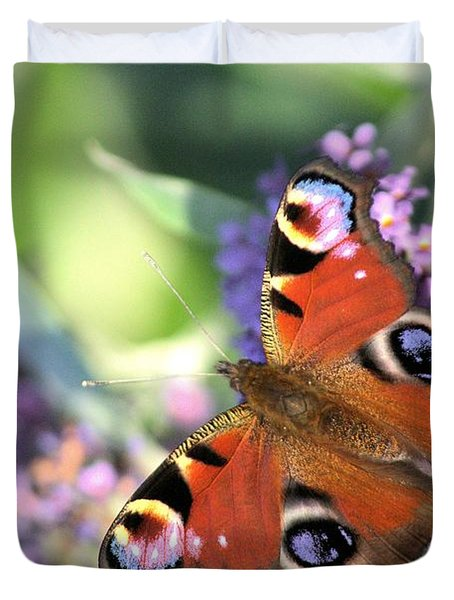 Butterfly On Buddleia Duvet Cover by Gordon Auld