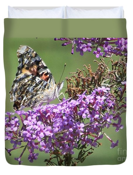 Duvet Cover featuring the photograph Painted Lady Butterfly by Eunice Miller