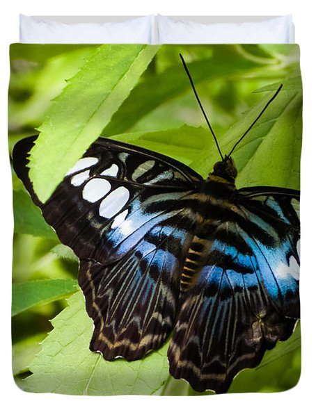Butterfly On Leaf   Duvet Cover by Lars Lentz