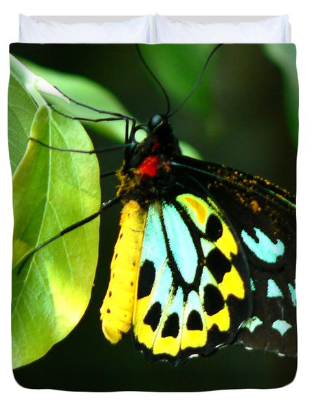 Butterfly On Leaf Duvet Cover