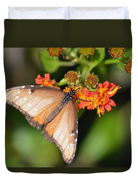 Butterfly On Mexican Flame Duvet Cover by Debra Martz