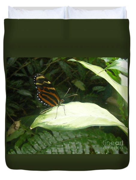Duvet Cover featuring the photograph Butterfly Portrait by Nancy Kane Chapman