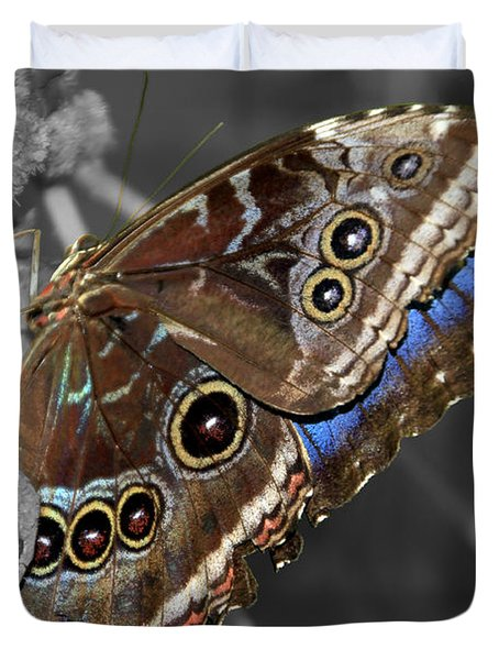 Butterfly Spot Color 1 Duvet Cover