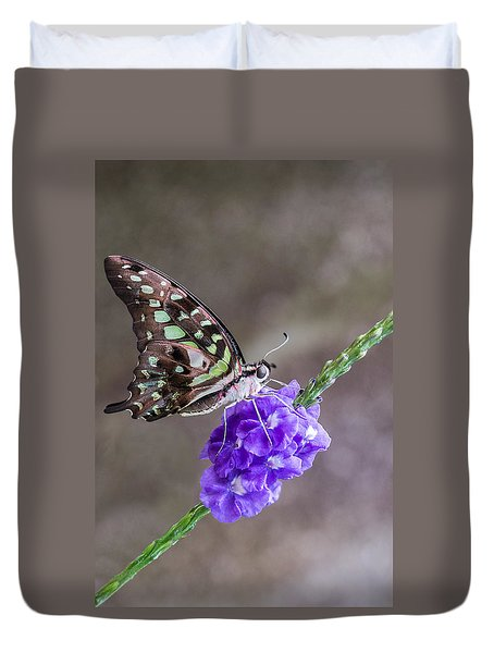 Butterfly - Tailed Jay I Duvet Cover