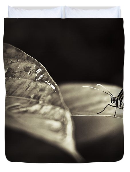 Butterfly Warm Tone Duvet Cover by Bradley R Youngberg