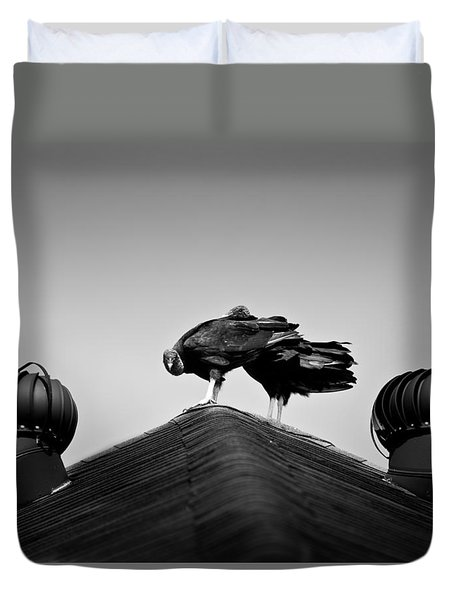 Buzzards 2 Duvet Cover by Mark Alder