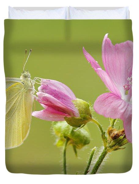 Cabbage White Butterfly On Flower Duvet Cover