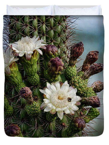 Cacti Bouquet  Duvet Cover