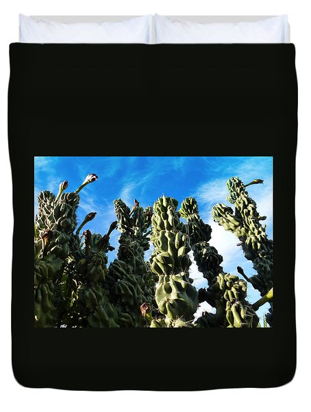 Duvet Cover featuring the photograph Cactus 1 by Mariusz Kula