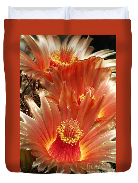 Cactus Blossoms Duvet Cover by Judy Whitton