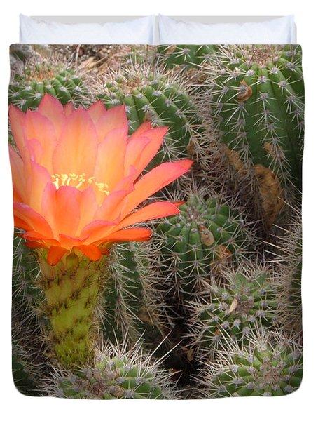 Cactus Flower Duvet Cover by Cheryl Del Toro