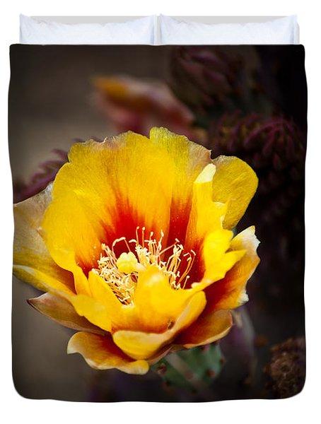 Cactus Flower Duvet Cover by Swift Family