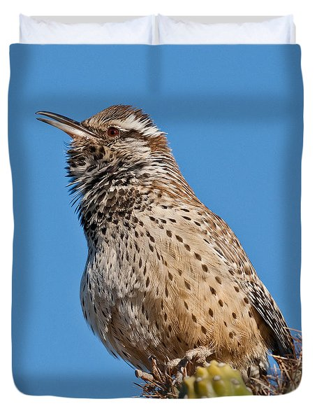 Cactus Wren Singing Duvet Cover