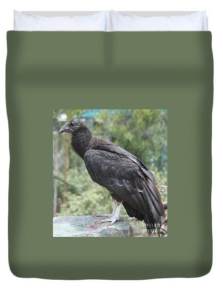 California Condor Duvet Cover