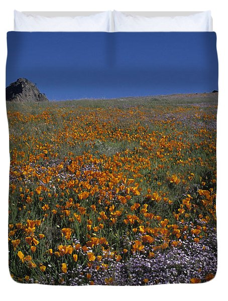 California Gold Poppies And Baby Blue Eyes Duvet Cover