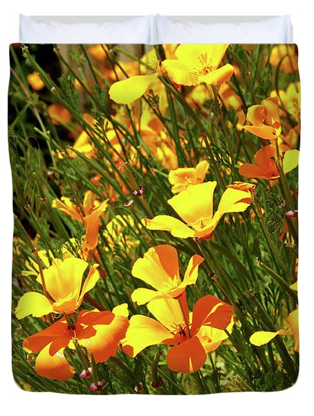 California Poppies Duvet Cover by Ed  Riche