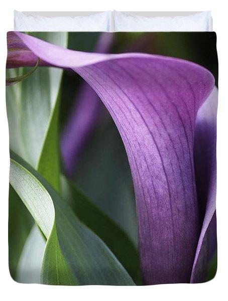 Calla Lily In Purple Ombre Duvet Cover