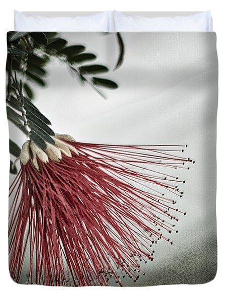 Calliandra Californica Duvet Cover