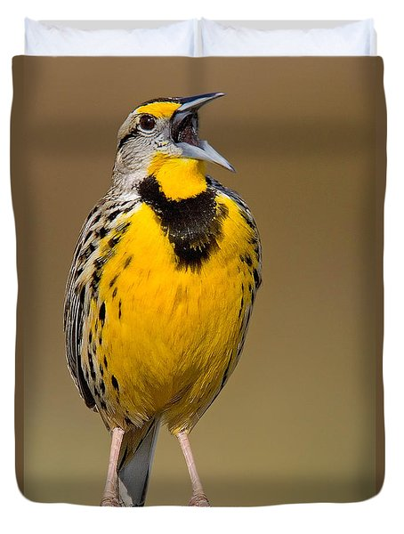 Calling Eastern Meadowlark Duvet Cover by Jerry Fornarotto