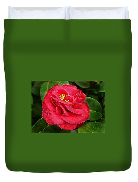 Camellia Japonica ' Dixie Knight ' Duvet Cover by William Tanneberger
