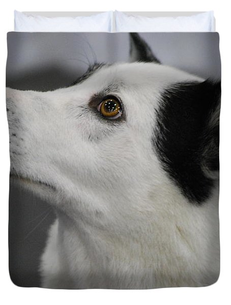 Canaan Dog Duvet Cover