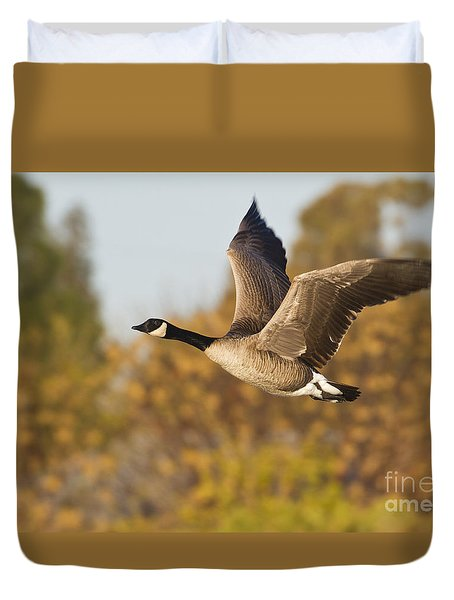 Duvet Cover featuring the photograph Canada Goose In The Skies  by Bryan Keil