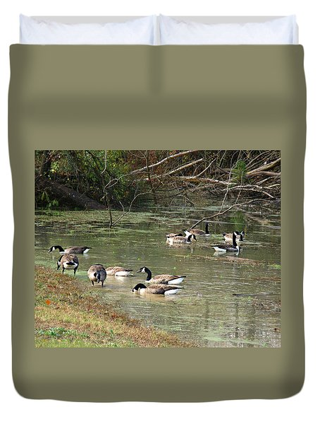 Canadian Geese Feeding In Backwaters Duvet Cover by William Tanneberger