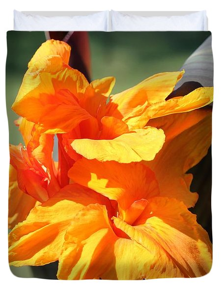 Canna Lily Named Wyoming Duvet Cover by J McCombie
