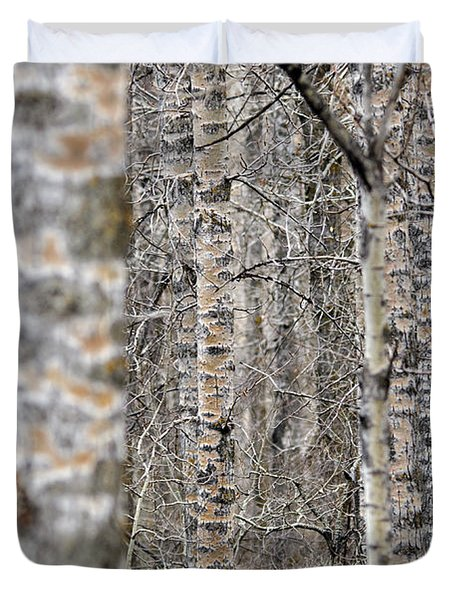 Can't See The Wood For The Trees Duvet Cover by Dee Cresswell
