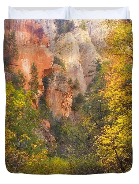 Canyon Kaleidoscope  Duvet Cover by Peter Coskun