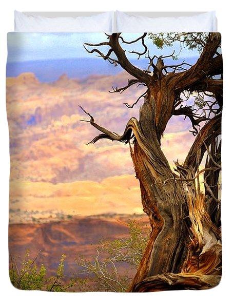 Canyon Vista 1 Duvet Cover by Marty Koch