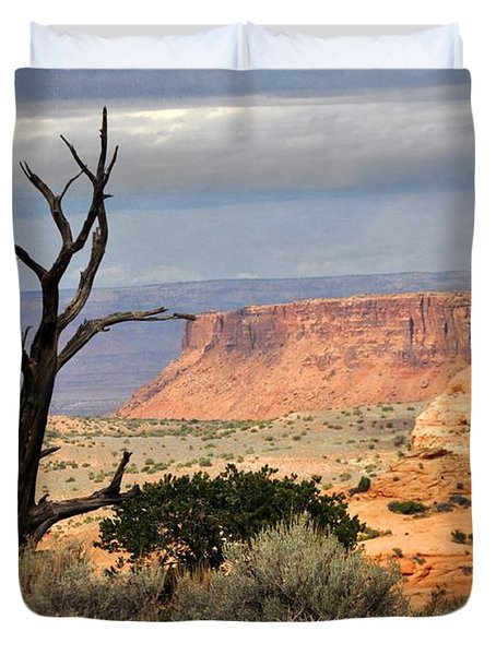 Canyon Vista 2 Duvet Cover by Marty Koch
