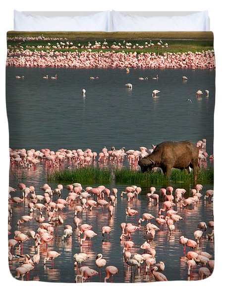 Cape Buffalo And Lesser Flamingos Duvet Cover
