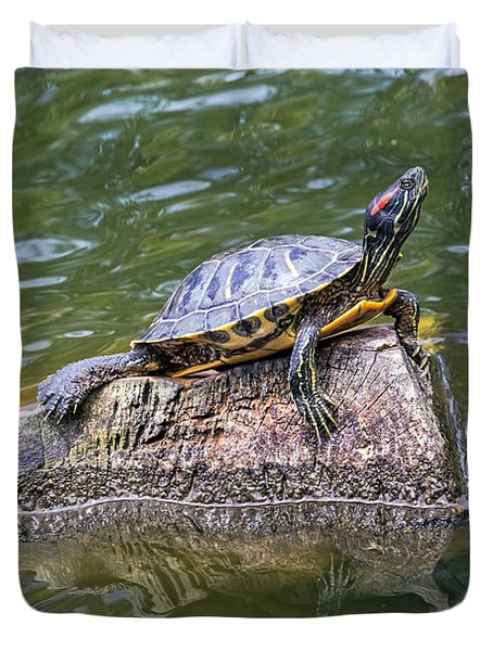 Duvet Cover featuring the photograph Captain Turtle by Kate Brown