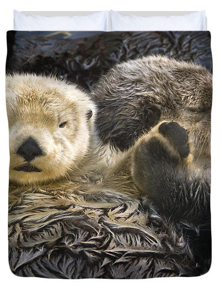 Captive Two Sea Otters Holding Paws At Duvet Cover