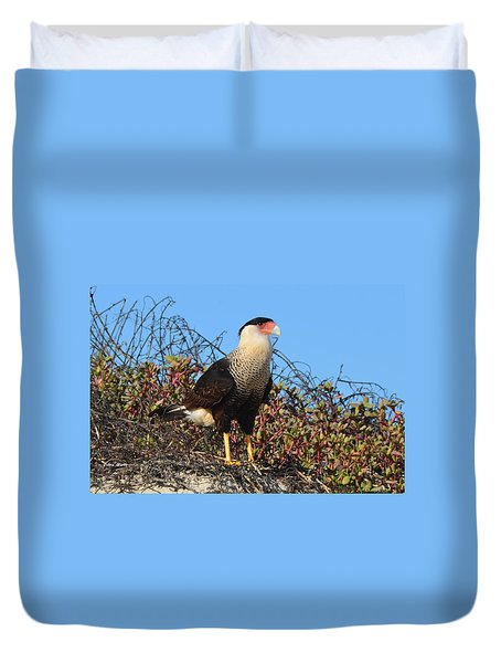 Caracara In The Dunes Duvet Cover by Debra Martz