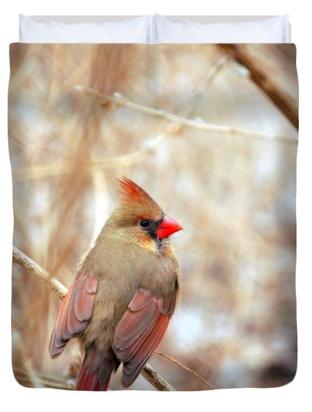 Duvet Cover featuring the photograph Cardinal Birds Female by Peggy Franz