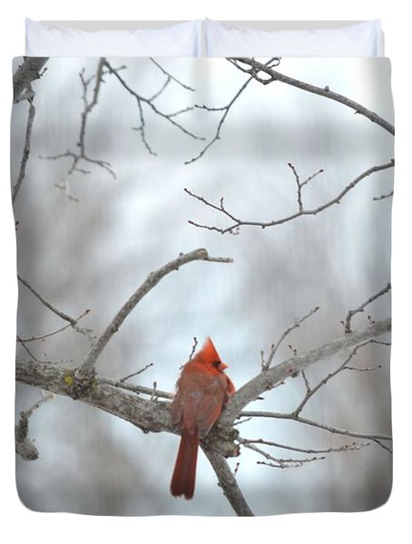 Duvet Cover featuring the photograph Cardinal Delight by Dacia Doroff