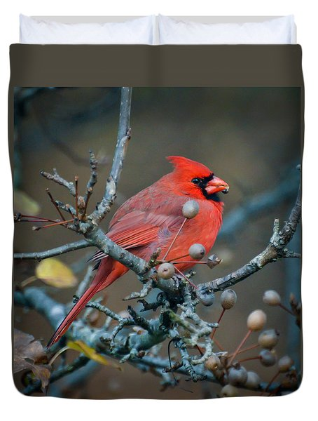 Cardinal In The Berries Duvet Cover by Kerri Farley