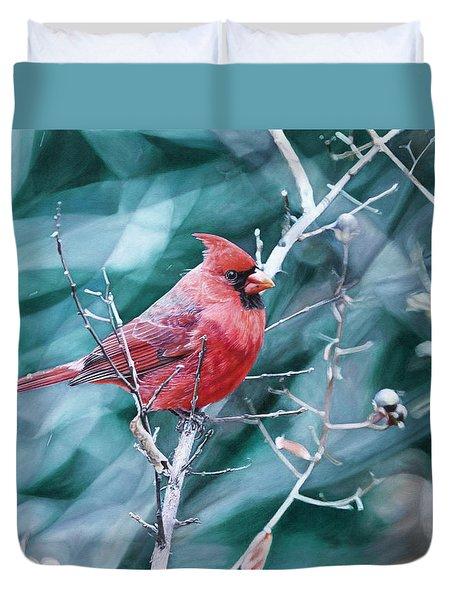 Cardinal In Winter Duvet Cover by Joshua Martin