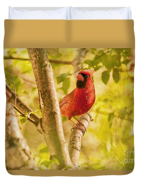 Cardinal Rules Duvet Cover by Lois Bryan