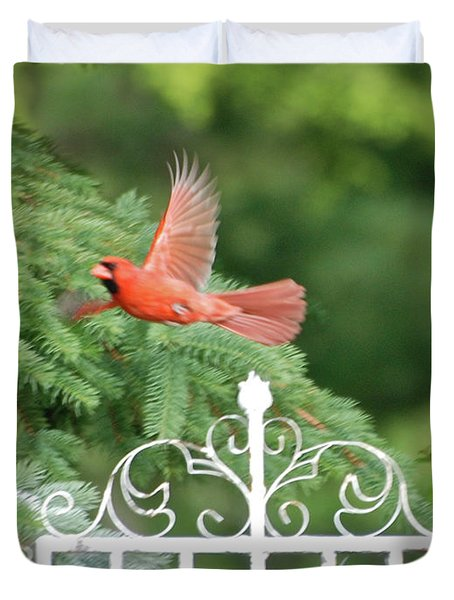 Duvet Cover featuring the photograph Cardinal Time To Soar by Thomas Woolworth