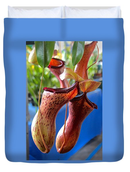 Carnivorous Pitcher Plants Duvet Cover
