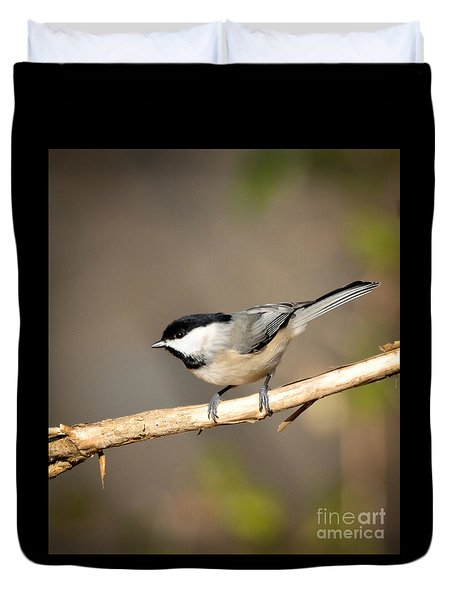 Carolina Chickadee  Duvet Cover by Kerri Farley
