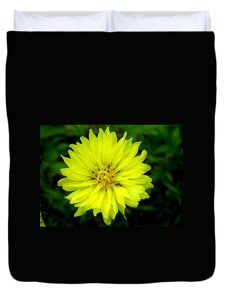 Duvet Cover featuring the photograph Wild Carolina Desert Chicory by William Tanneberger
