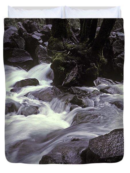 Cascade Duvet Cover by Ron Sanford