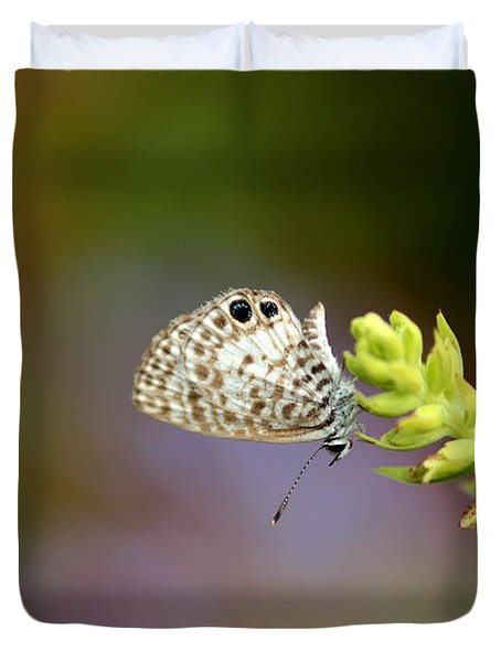 Duvet Cover featuring the photograph Cassius Blue by Greg Allore